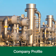 mds petrochemical company profile